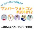 ワンパーフォトコン(#ワンパー201812)入選&ベスト・ワンパー賞発表!